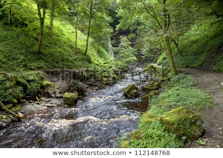 Hardraw force waterfall in Leyburn, North Yorkshire. Stock photo © CaptureLight
