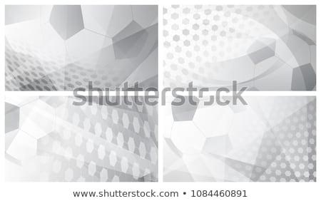 soccer-background Stock photo © cundm