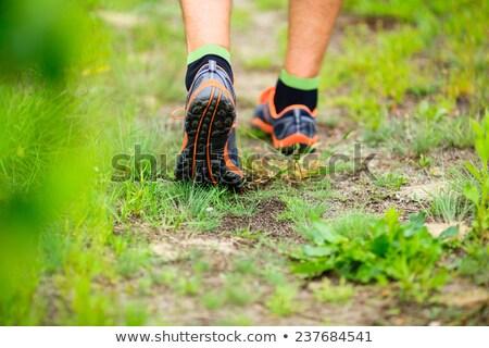 Stock fotó: Férfi · sétál · kereszt · vidék · nyom · erdő