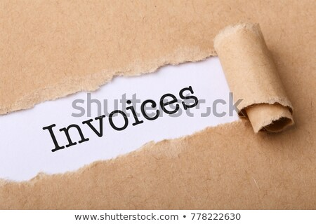 Paid on Business Folder in Catalog. Stock photo © tashatuvango