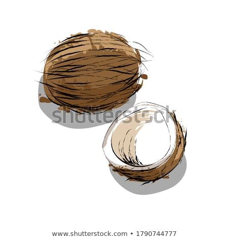 Peloso Palm mano isolato uomo corpo Foto d'archivio © popaukropa