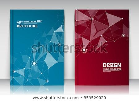 titkolózás · üzlet · mappa · katalógus · kártya · közelkép - stock fotó © tashatuvango