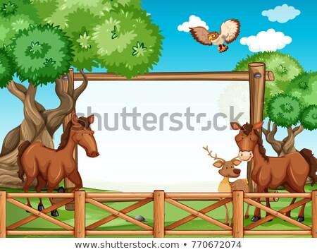 fából · készült · ló · hintaló · hintaszék · fa · játék - stock fotó © bluering