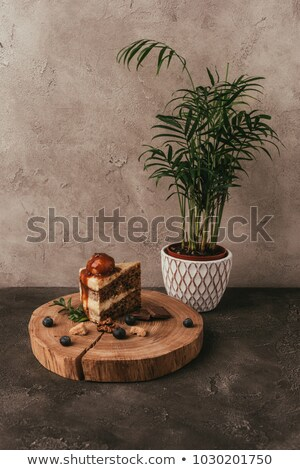 piece od delicious cake with berries on wooden board and green houseplant  Stock photo © LightFieldStudios