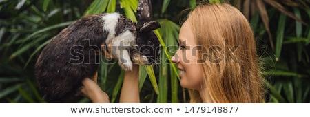 woman holds a white rat stock photo © oleksandro