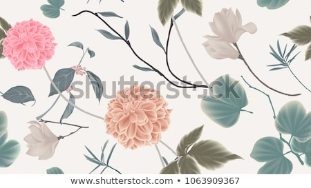 magnolia flowers on gray stock photo © neirfy