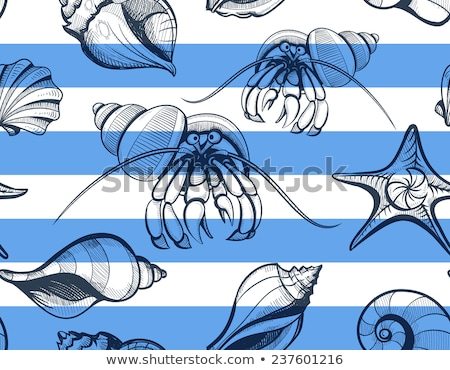 Crab hermit pattern seamless. Crab in shell background. Marine a Stock photo © popaukropa