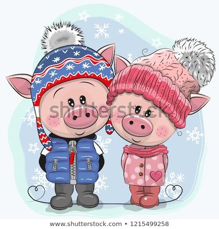 Słodkie wieprzowych zimą hat nowy rok strony Zdjęcia stock © bedlovskaya