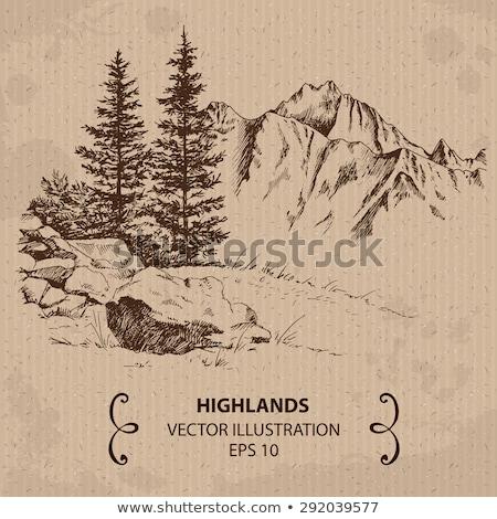 vettore · cartoon · stile · montagna · foresta · cielo - foto d'archivio © cidepix