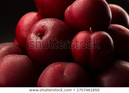 closeup of wet fresh plums stock photo © dash