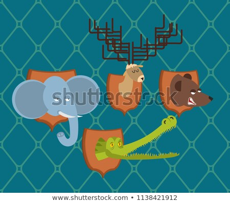 hunter trophy set elephant and bear head moose and crocodile on stock photo © popaukropa