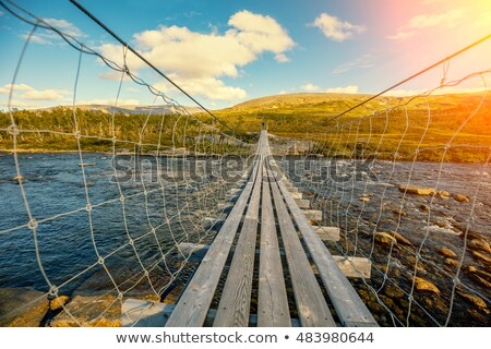 suspension bridge over the mountain river norway stock photo © cookelma