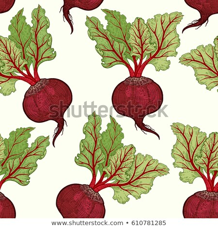 Background of Burgundy beets. Vector seamless pattern of vegetab Stock photo © popaukropa
