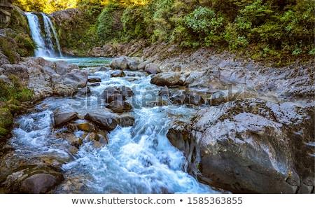 Rock río paisaje montana aves azul Foto stock © fyletto