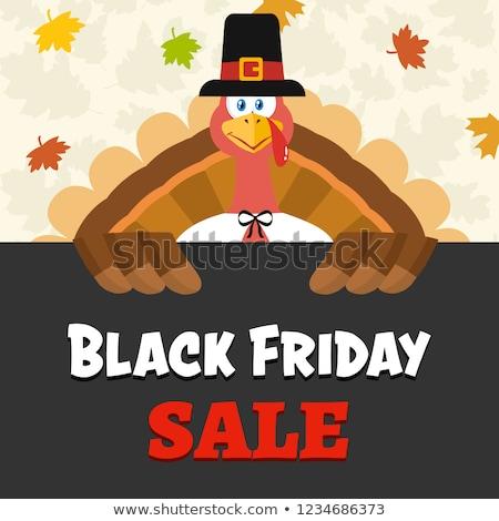 pilgrim turkey bird cartoon mascot character over a sign black friday sale stock photo © hittoon