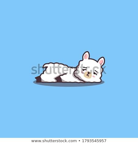 Karikatür lama sıkılmış örnek Stok fotoğraf © cthoman
