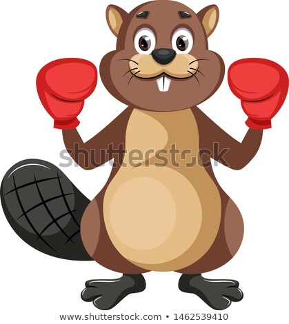Stock photo: Cartoon Beaver Boxing