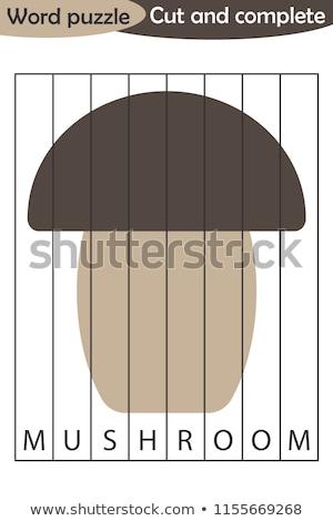 spelling word scramble game template for mushroom stock photo © colematt