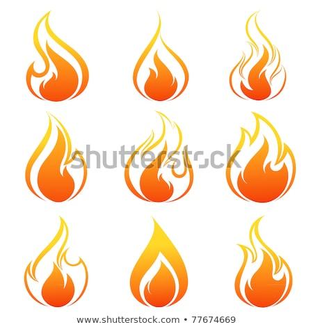 Bonfire Campfire Fire Burning Drawing Stock photo © patrimonio