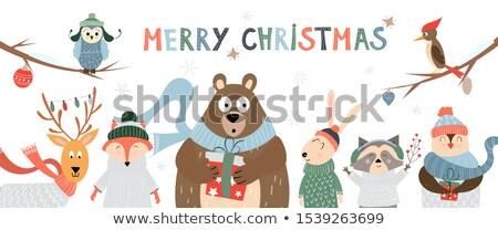 Joyeux Noël carte postale pingouin chandail peu Photo stock © robuart