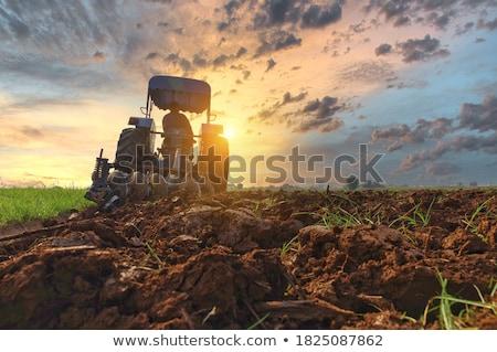 Farmer Driving Tractor on Field, Farming Season Stock photo © robuart