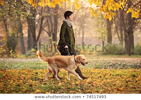 Woman Walking Dog Outdoors In Autumn Park Stock photo © monkey_business