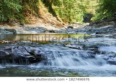 Górskich strumienia wodospad niebieski góry mglisty Zdjęcia stock © lovleah