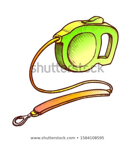 Tasma kayışı iç köpek tek renkli vektör Stok fotoğraf © pikepicture