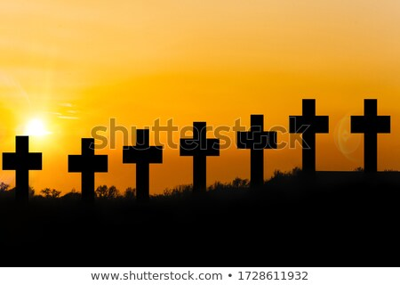 Group Of Crosses On Graves In Christian Cemetery Stock photo © diego_cervo