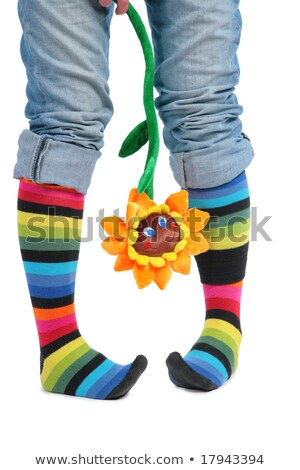 Stock photo: Two feet in multi-coloured socks and sunflower