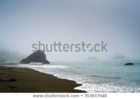 rocky misty coast stock photo © elenaphoto