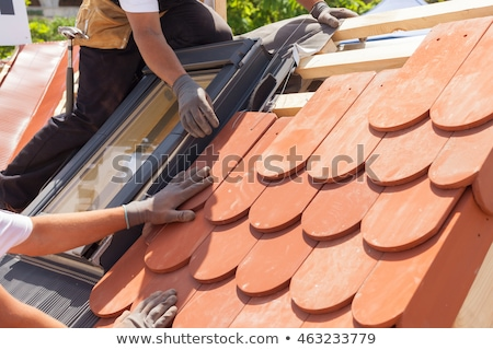Stock photo: tiled roof with windows