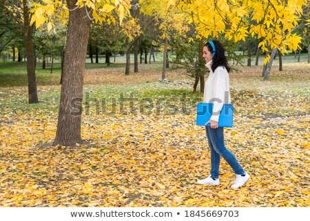 Retrato jovem cabelo preto mulher azul lã Foto stock © imarin