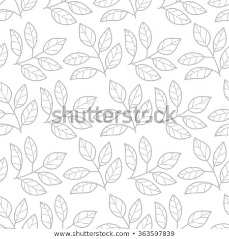 древесины · листьев · бумаги · текстуры · весны · стены - Сток-фото © barbaliss