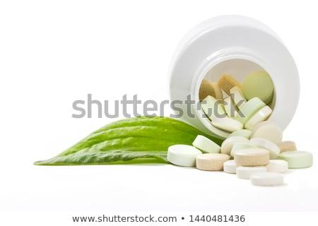 omeopatici · pillole · donna · mano · medici · vetro - foto d'archivio © melpomene