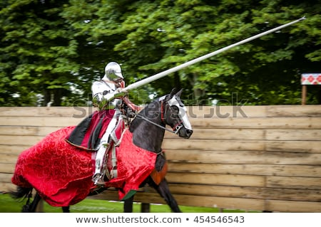 knights in shining armor historical festival stock photo © taiga