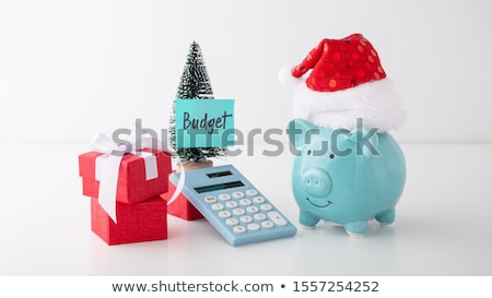 Christmas Budget Stock photo © Lightsource