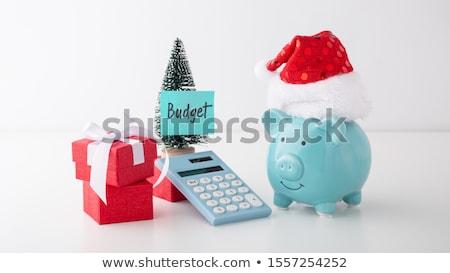 christmas budget stock photo © lightsource
