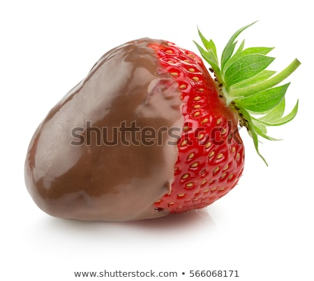 Chocolate Covered Strawberries (isolated) stock photo © sonofpromise