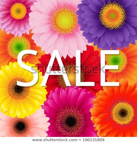 Renk satış poster doğa bahçe yaz Stok fotoğraf © adamson