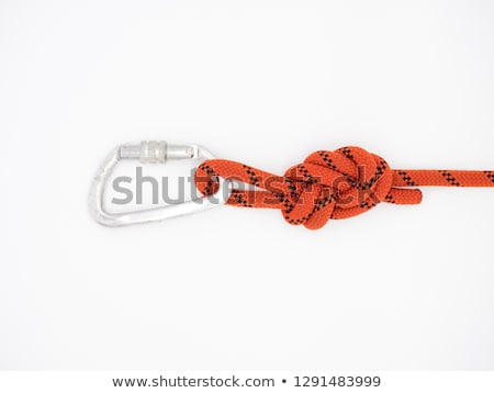 carabin on white background stock photo © ozaiachin