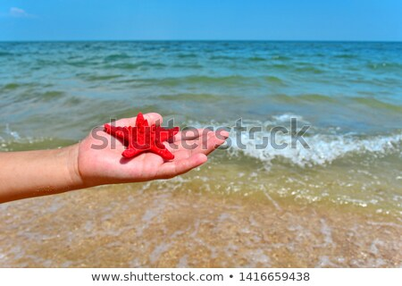 young man and starfish on the beach stock photo © nito
