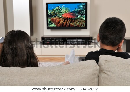 Dos LCD pantalla plana tv aislado Foto stock © ozaiachin