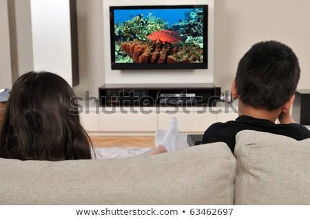 Twee lcd flatscreen tv geïsoleerd Stockfoto © ozaiachin