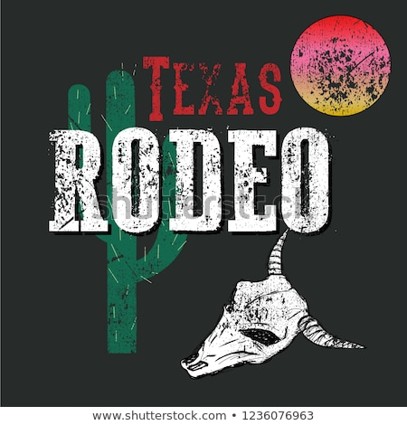 Girl rodeo Stock photo © adrenalina