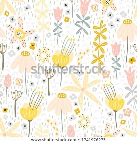 absztrakt · szép · virág · végtelen · minta · szín · természet - stock fotó © milalena