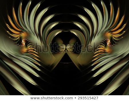 фрактальный иллюстрация бабочка спиральных свечение Сток-фото © yurkina