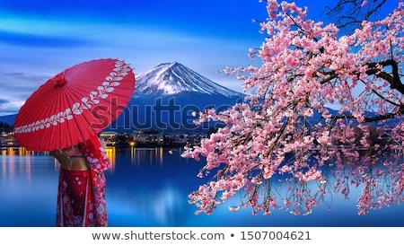 sınır · örnek · tok · çiçeklenme · soyut - stok fotoğraf © lenm