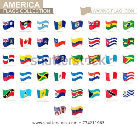 Brazília Bahamák zászlók puzzle izolált fehér Stock fotó © Istanbul2009