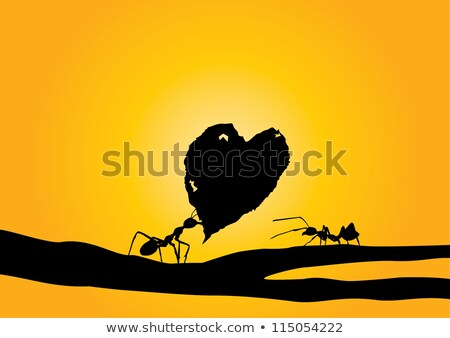 Formigas casal ilustração família floresta vermelho Foto stock © adrenalina